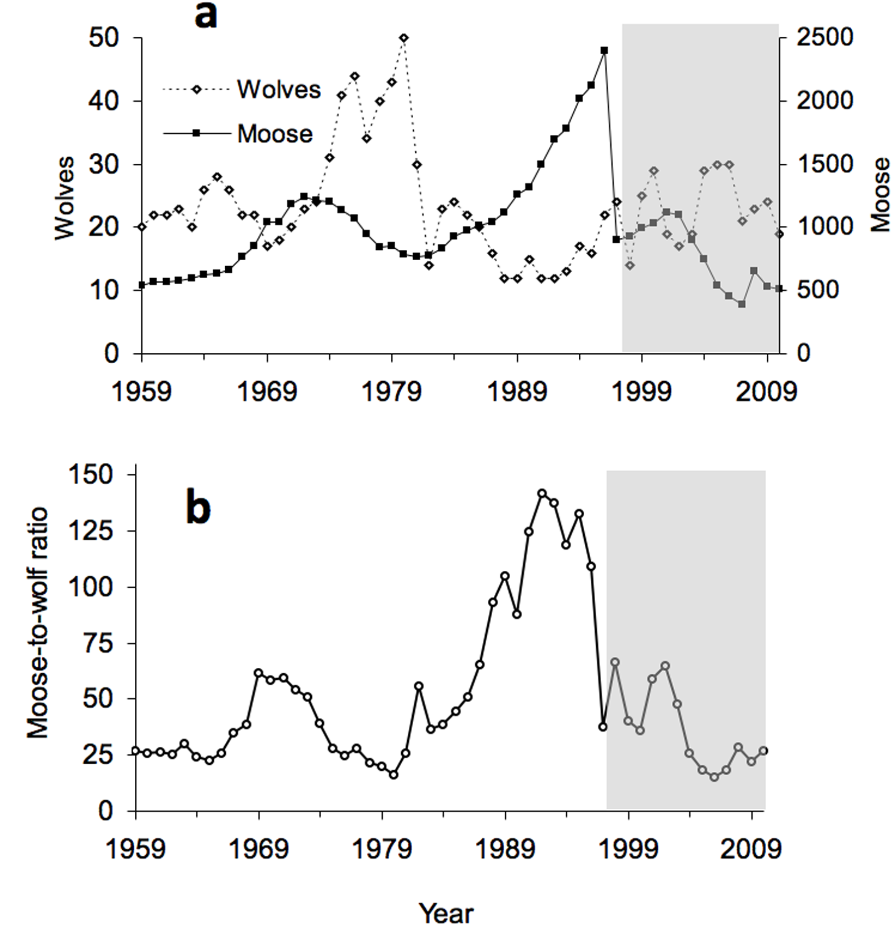The population biology of isle royale wolves and moose an so did wolf demography improve after the immigrants arrival the answer is complicated after no 93s arrival wolf abundance may have generally increased robcynllc Gallery